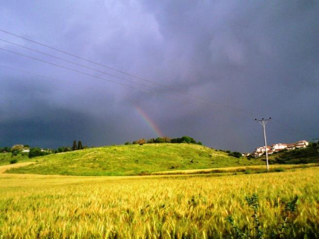 סוף שבוע גשם